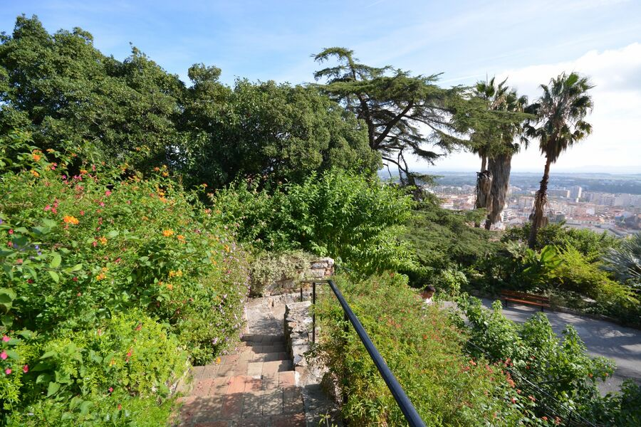 All the gardens of the world – Guided tour à Hyères - 4
