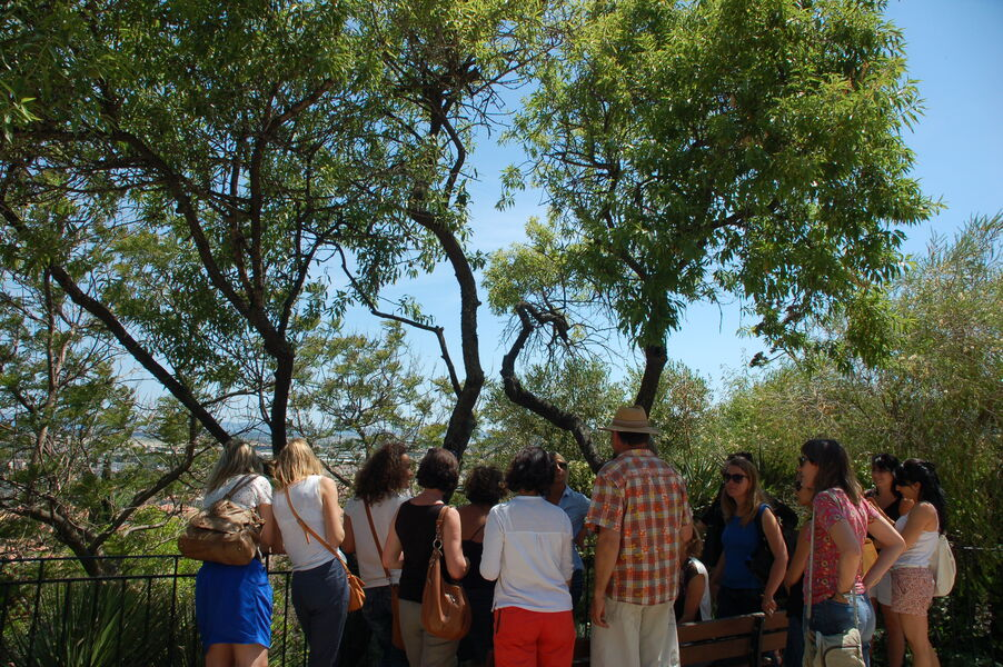 All the gardens of the world – Guided tour à Hyères - 2