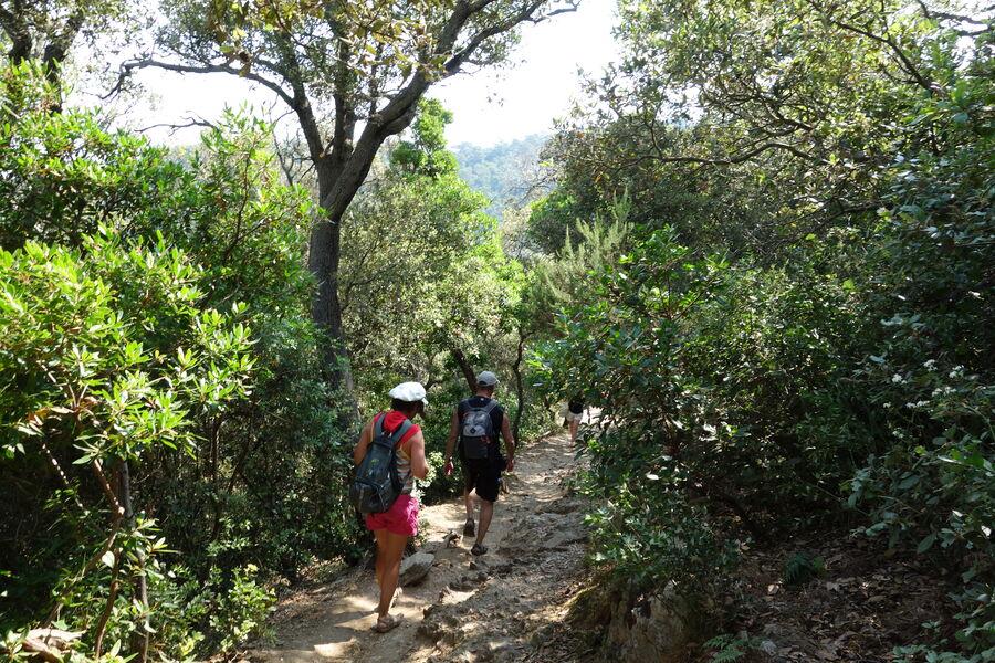 Guided Tour in Port Cros National Park à Hyères - 0