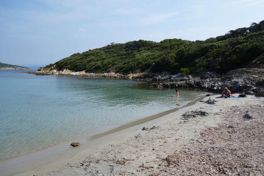 Guided Tour in Port Cros National Park à Hyères - 3