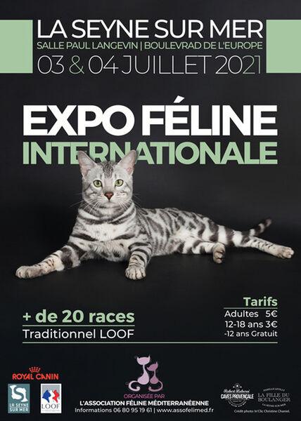 2nd International Cat Show à La Seyne-sur-Mer - 0