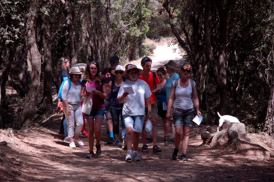 Guided Tour in Porquerolles with Charlotte à Hyères - 3
