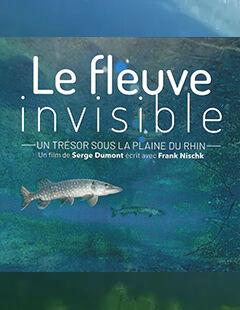 Ecran nature à Porquerolles – Le fleuve invisible (S.Dumont) à Hyères - 0