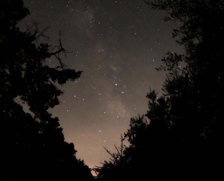 Balade découverte : Les Perséides Quand les étoiles viennent à nous à La Garde - 0