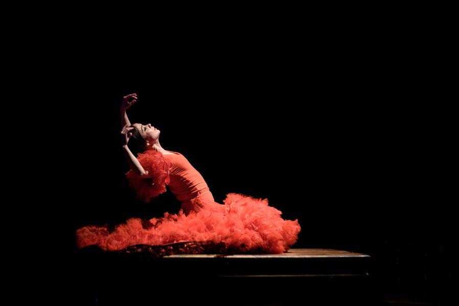 "Musique: ""La Espina que quiso ser flor o la Flor que soñó con ser bailaora"" d'Olga Pericet à Ollioules - 0"