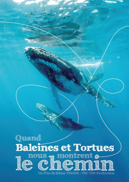 Nature screen at Pradet – When whales and turtles show us the way (R. Tézier) à Le Pradet - 0